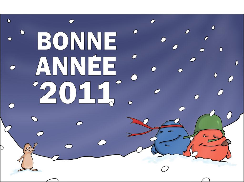 2011-01-12-Bonne année
